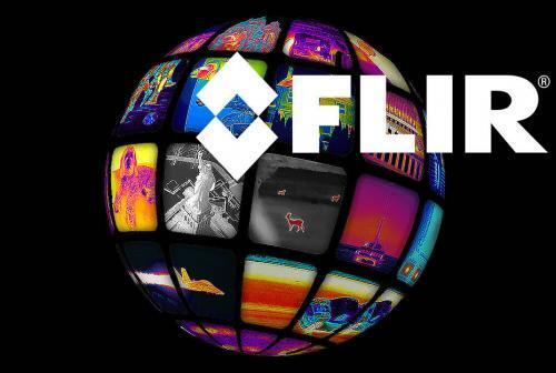 flir-globe