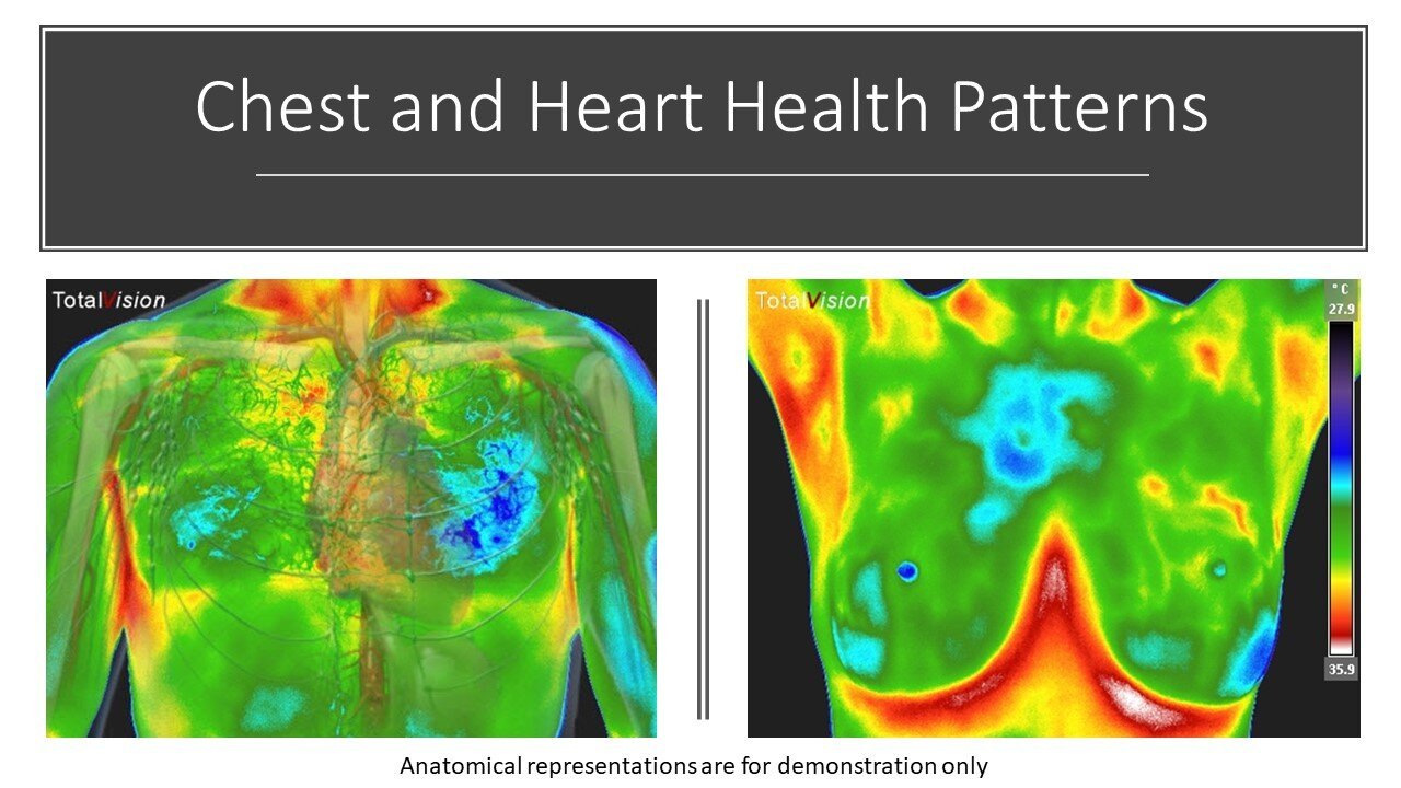 Medical Thermography Presentation - Chest & Heart